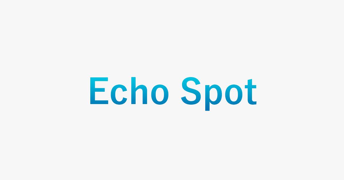 なぜEcho Spotは販売終了した?原因とおすすめ商品を紹介